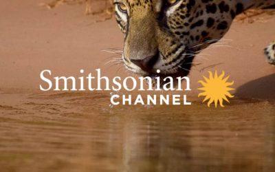 """""""Jaguarland"""", Tierra de jaguares Smithsonian Channel – Aportes a la conservación ambiental"""