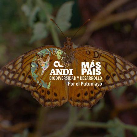 Experiencias público-privadas para el monitoreo y seguimiento de la biodiversidad y su valor en la toma de decisiones: Caso Putumayo
