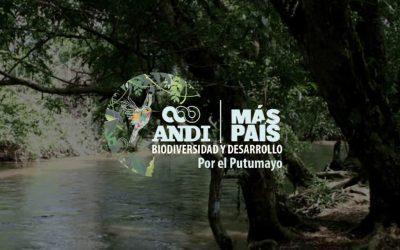 Contribuciones alrededor del Santuario de Flora Plantas Medicinales Orito-Ingi ANDE: Un escenario que conecta la diversidad cultural, biológica y el desarrollo sostenible